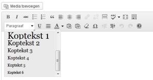 Uitgeklapt menu met kopteksten in de WordPress-editor